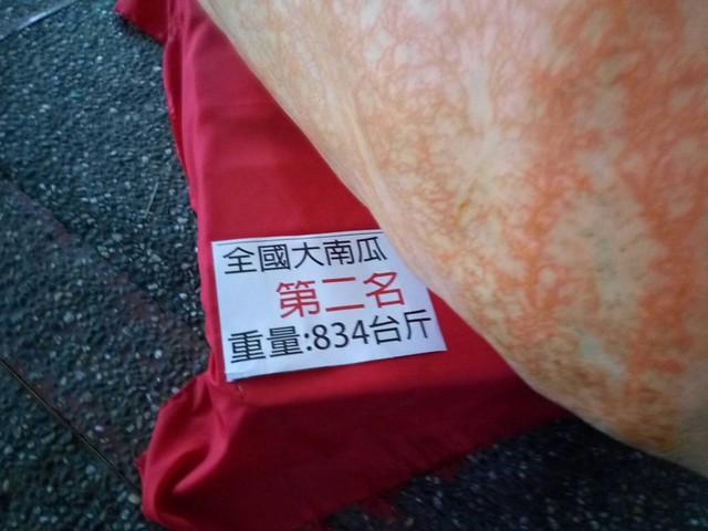 梅子工場第二名的大金瓜 (2)