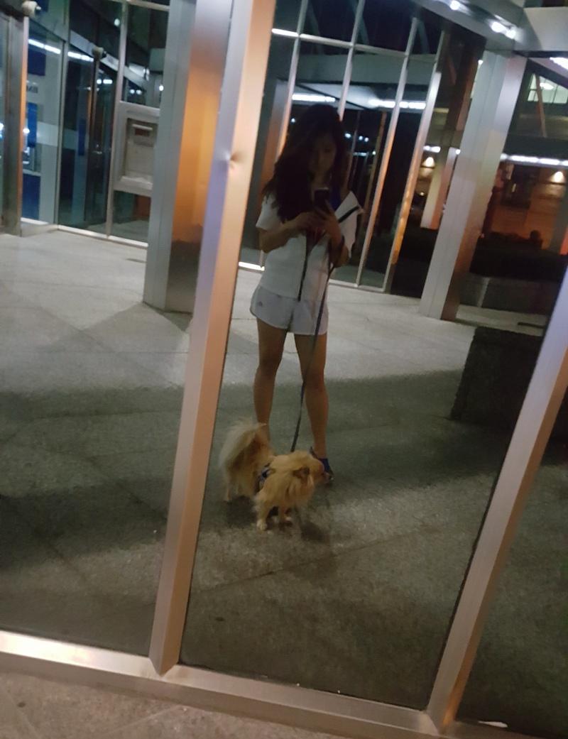 leftbanked dog walking