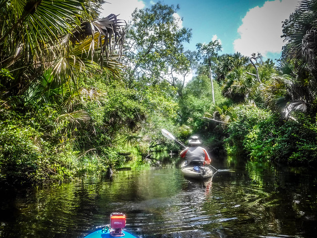 Juniper Springs Creek-112