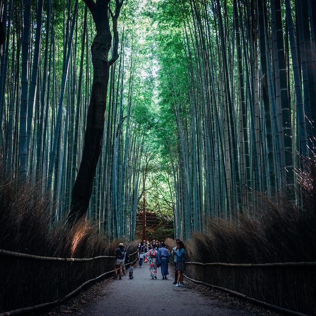 Kyoto_Arashiyama_14