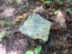 Limestone Lying About