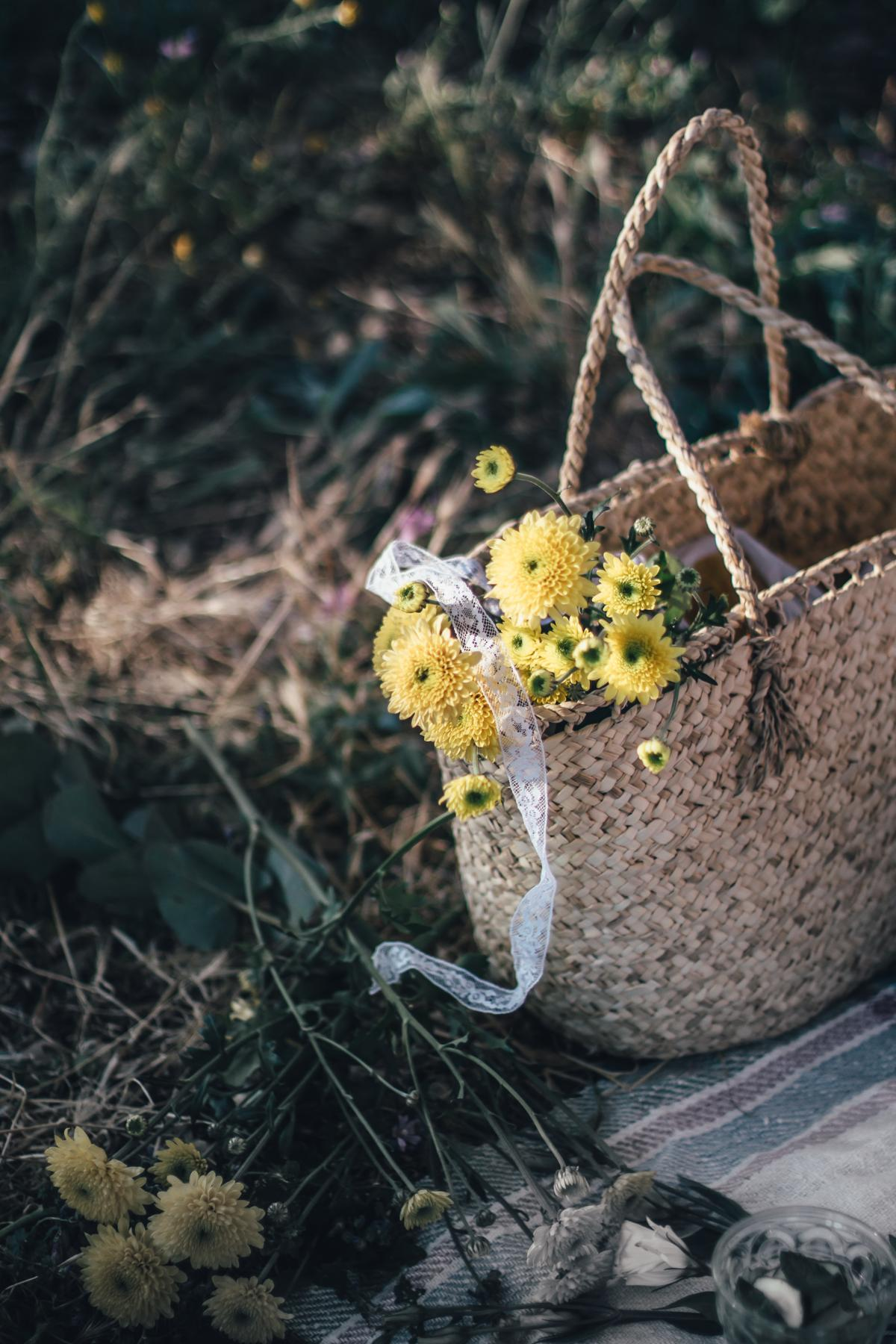 Virtual Midsummer Potlock for Peace | Lab Noon by Saghar Setareh-8