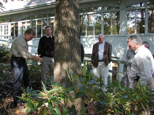 Tree wardens and deputy tree wardens learning to examine a tree for risk Annual Tree Warden School 2016