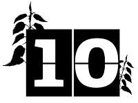 TWT 30 Days Wild_countdown_10