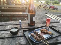蒸し器窯201706府中郷土の森BBQ場 (16)