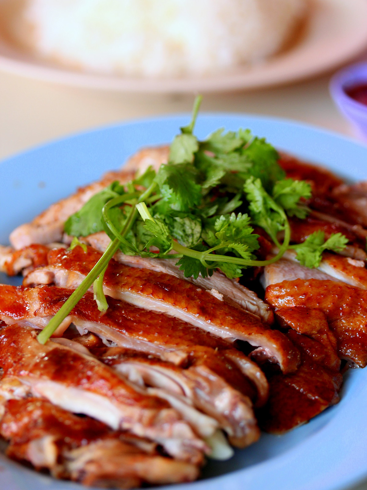 Eunos Eateries: Seng Kee Roasted Meat Duck Rice