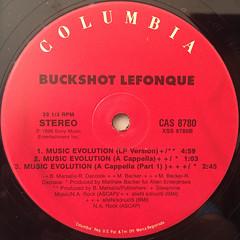 BUCKSHOT LEFONQUE:MUSIC EVOLUTION(LABEL SIDE-B)