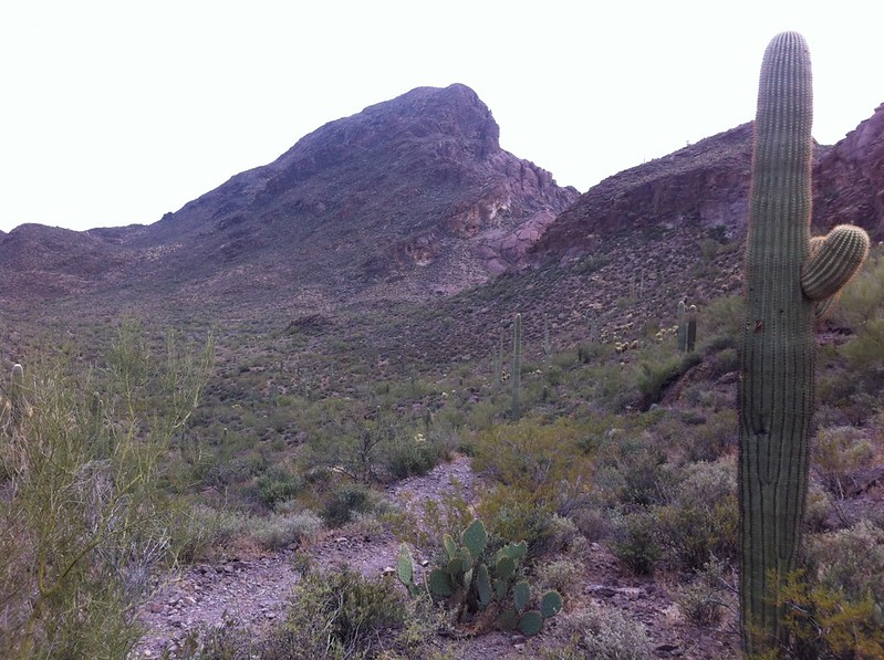 Vistas-Landscapes-Arizona