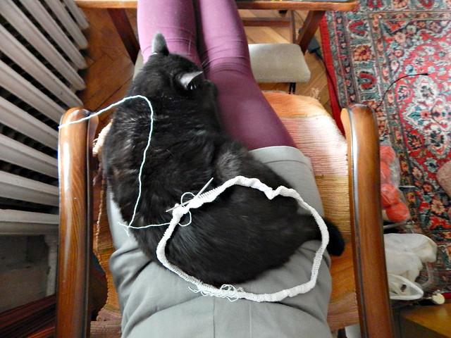 Белый свитер, начало. Чёрный кот Муся | White cotton sweater, beginning. Musia the black cat.
