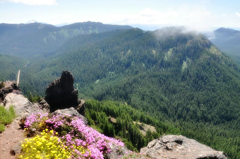 Iron Mountain Hike Tiny Road @ Mt. Hope Chronicles