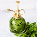 How-to Refresh and Hydrate Your Skin with Homemade Infused Face Mists