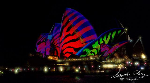Sydney Vivid - 2017