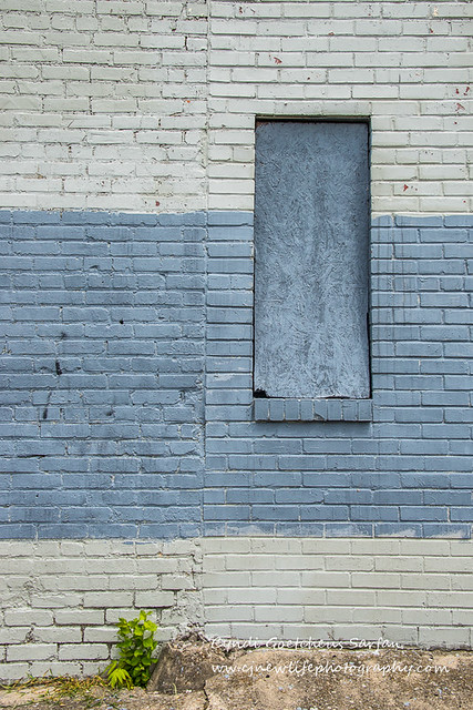 wabi sabi blue wall