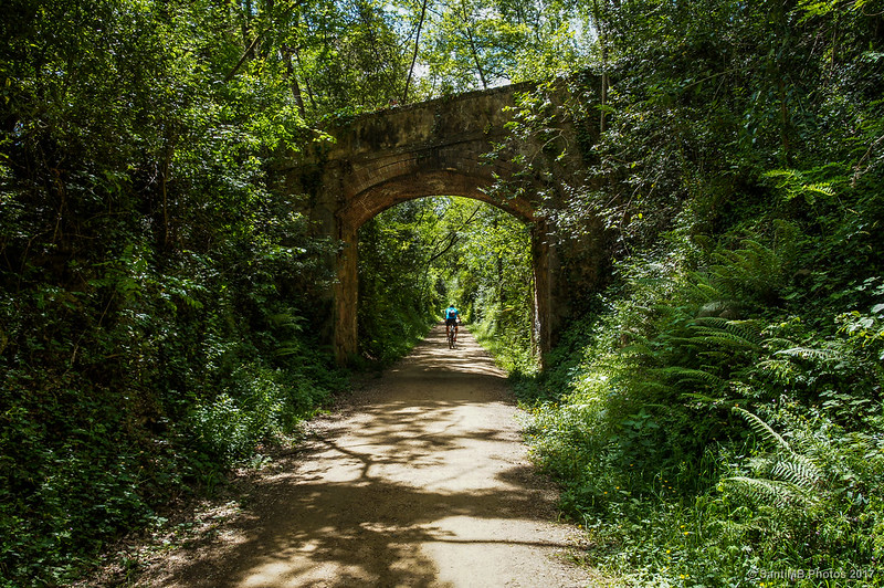 Puente de la Colonia Dusol