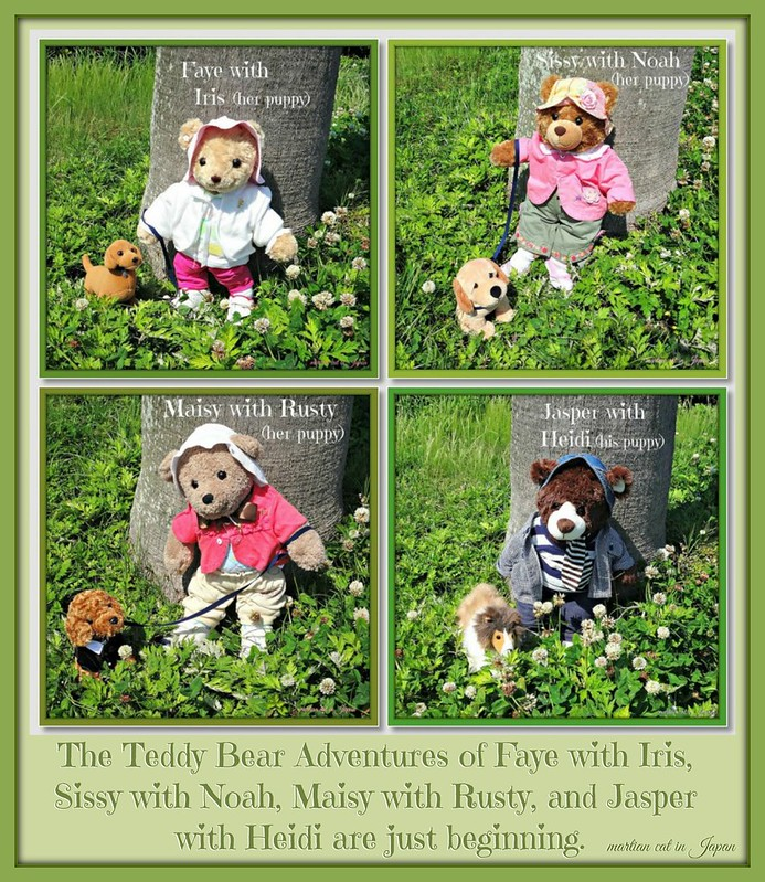 The Teddy Bear Adventures of Faye with Iris, Sissy with Noah, Maisy with Rusty, and Jasper with Heidi are just beginning.