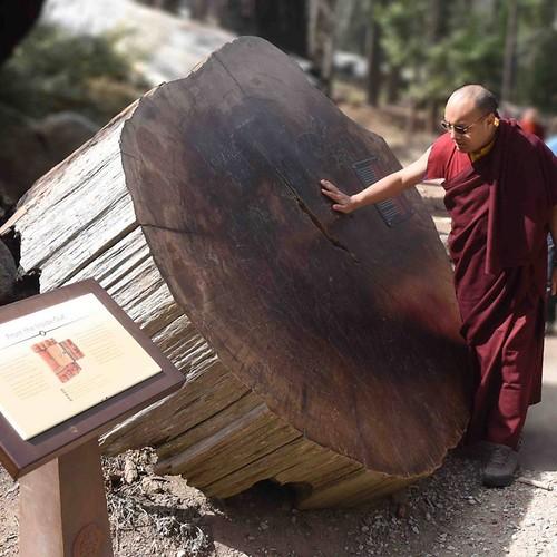 17th Karmapa in Yosemite park
