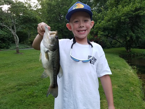 Weekly fishing report july 5 for Dnr fishing report md
