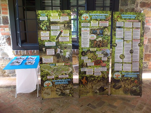 Restore Ubin Mangroves (R.U.M.) Initiative at Balik Chek Jawa 2017