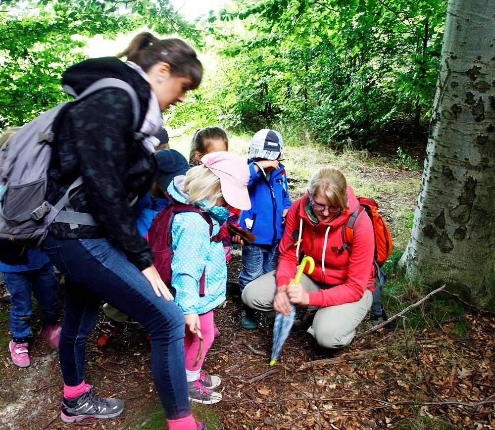 森林日是許多德國幼稚園的必修課
