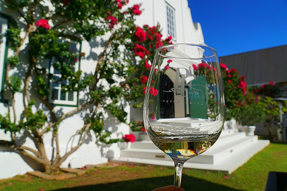 Wine Tasting on the Beautiful Grounds of Stellenbosch's Peter Falke Winery