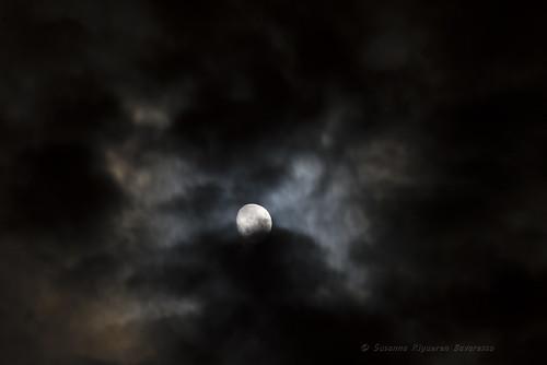 Clouds dancing in the moonlight
