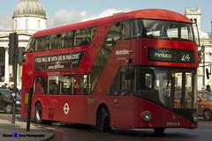 Wrightbus NRM NBFL - LTZ 1038 - LT38 - Pimlico 24 - Metroline - London 2017 - Steven Gray - IMG_8621