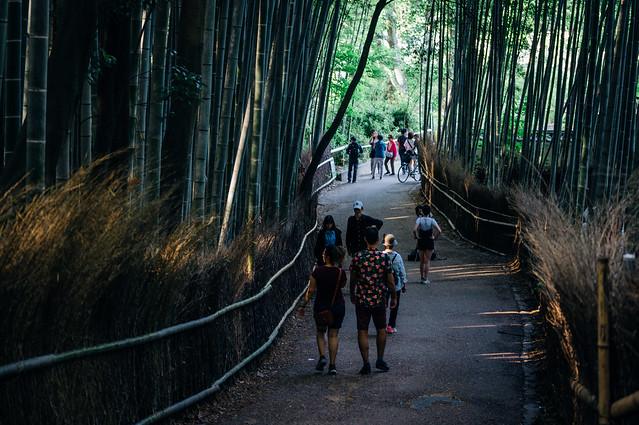Kyoto_Arashiyama_11