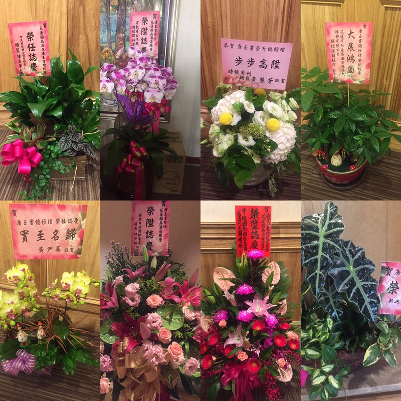 玉書的賀禮花 (2)