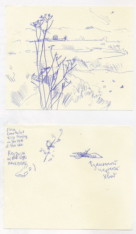 Sketchbook #104