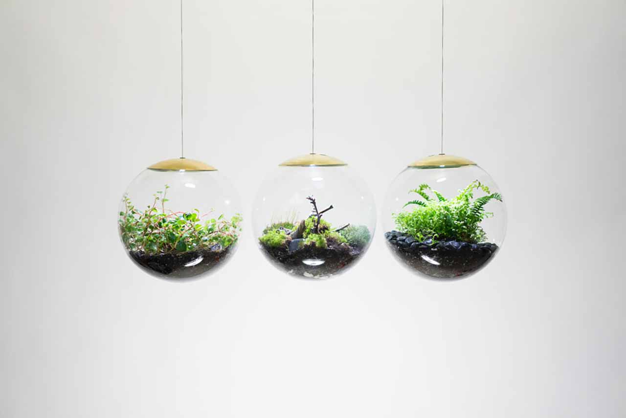 "Create Your Own Mini-Garden With These Terrarium Lamps: Spheres are produced in 8-inch and 12-inch sizes that can be used without a power supply as a LED light source. Therefore these designs are also considered as a lamp due to the LED addition. Owing to the micro-wires around the spheres, which are also utilized in clothing industry, the stainless steel wires are almost invisible. Even more fascinatingly, the sphere also becomes ""almost invisible"" in the dark. Thus, the system provides itself an astonishing view by making its viewers and owners only focus on the plants with an esthetic touch."