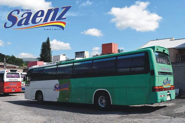 sanezz61