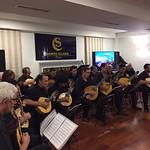 Concierto Cordophonia