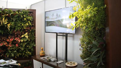 jardin-vertical2