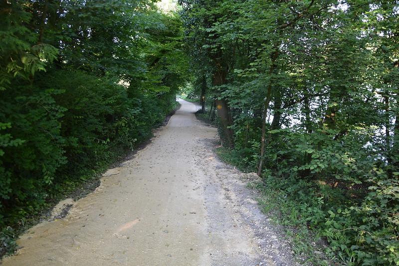 River Aar 25.05 (2)