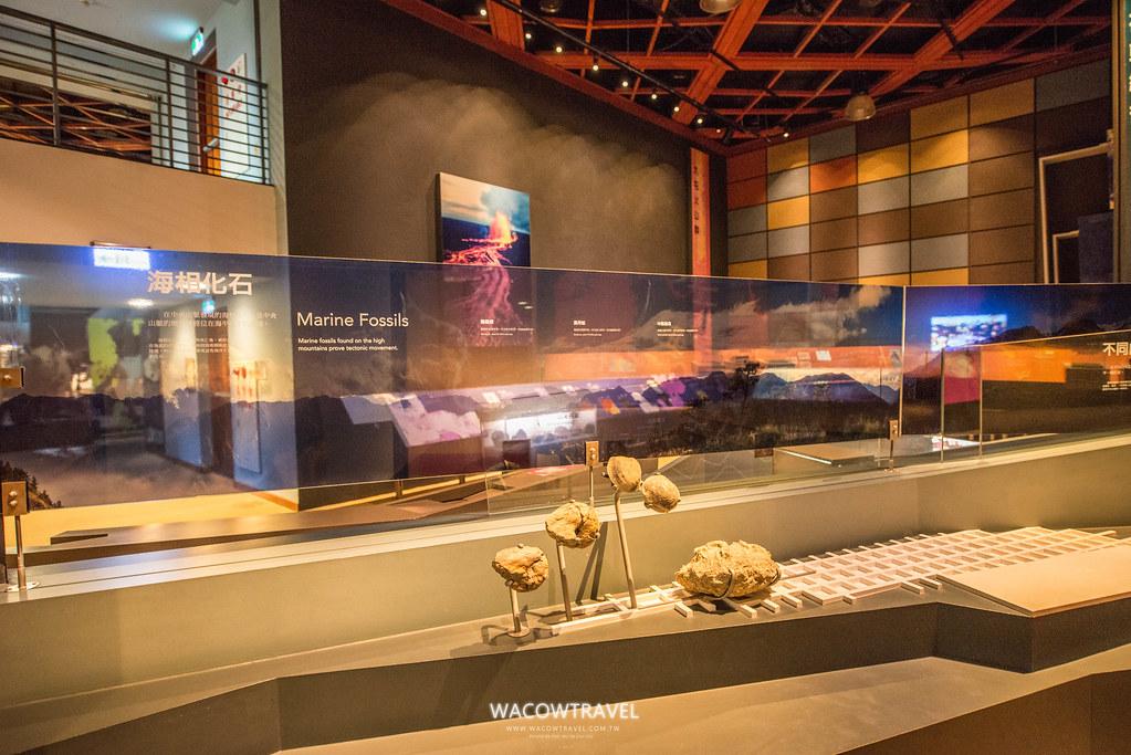 國立史前博物館-自然史