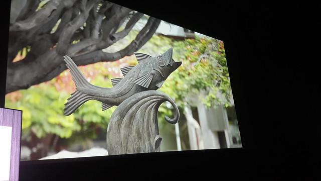 presentación vídeo Santa Cruz de Tenerife