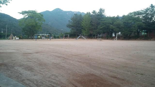 야생화동산@화북초등학교