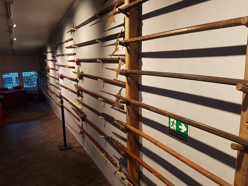Polearms at the Gairethinx museum