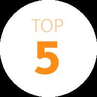 Top 5 logo