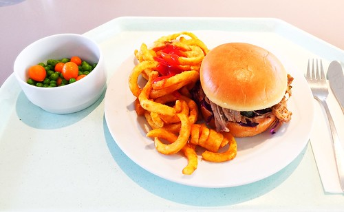 Pulled Pork & Twister Fries
