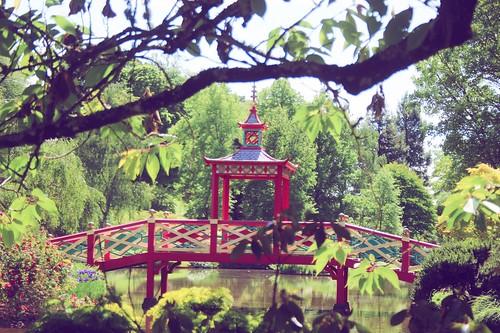 Jardin floral d'Apremont sur Allier (2)