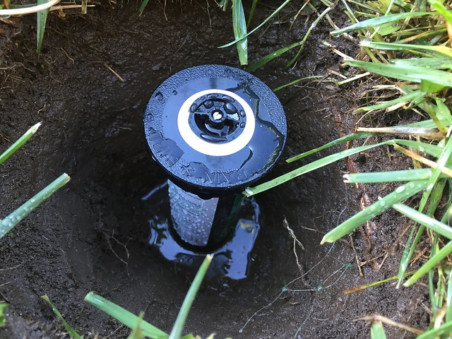 Replaced the sprinkler head