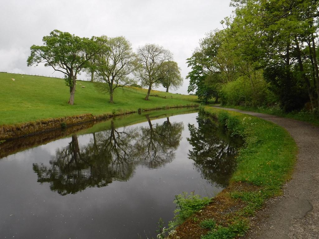 Salterforth to Foulridge 11