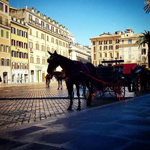 Roma: botticelle a Piazza di Spagna
