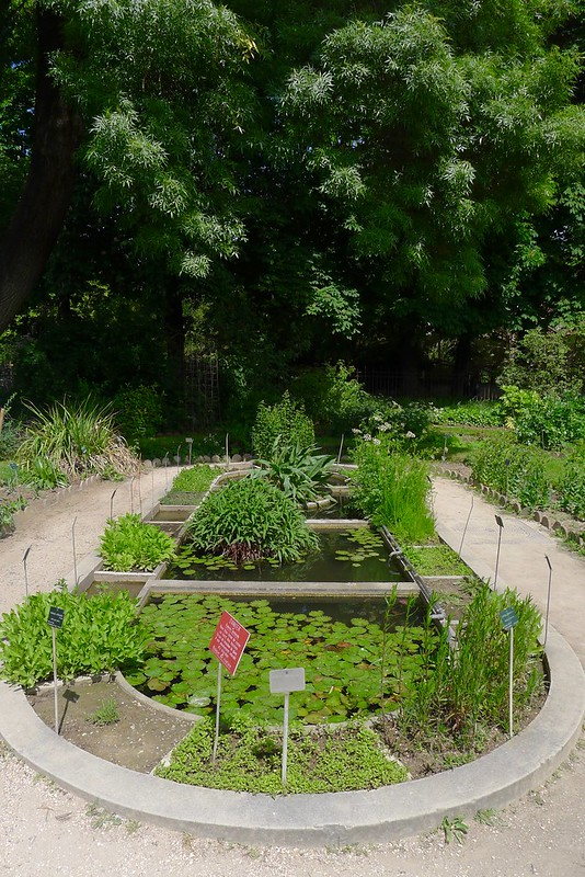 Nous visitons le merveilleux Jardin des Plantes