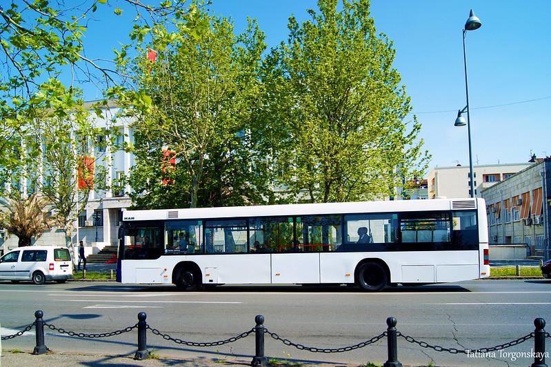 Автобус едет по бульвару Петра Цетинского