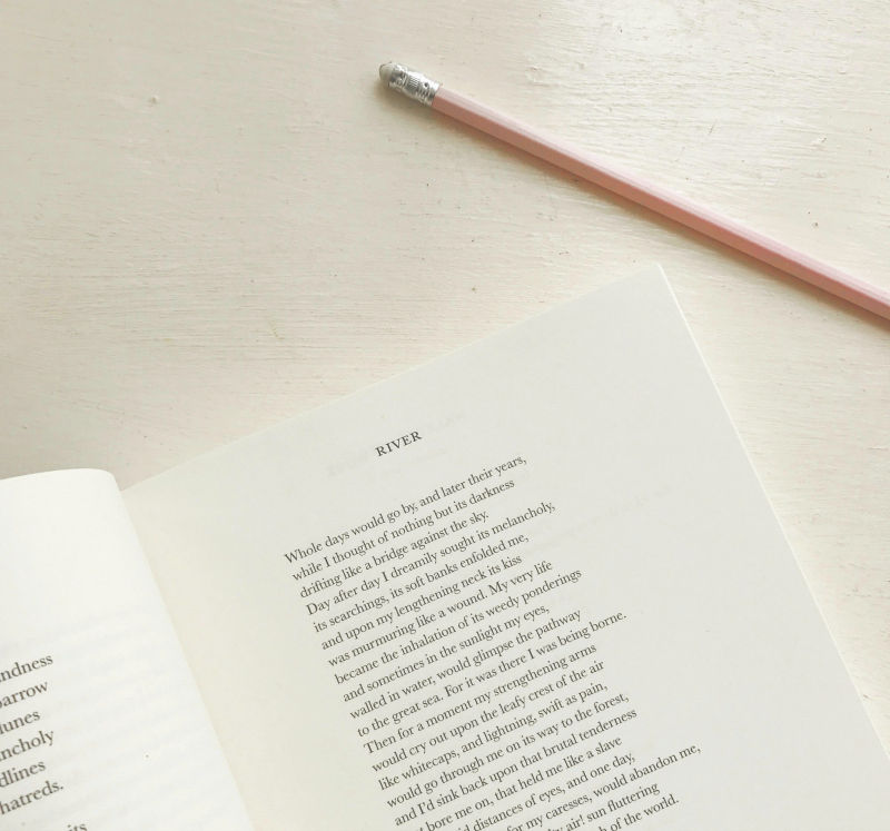how to read a poem book blog creative blog vivatramp advice