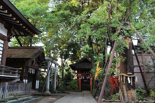 mabashiinarijinja28