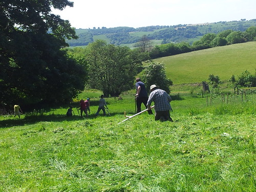 Scything on a slope