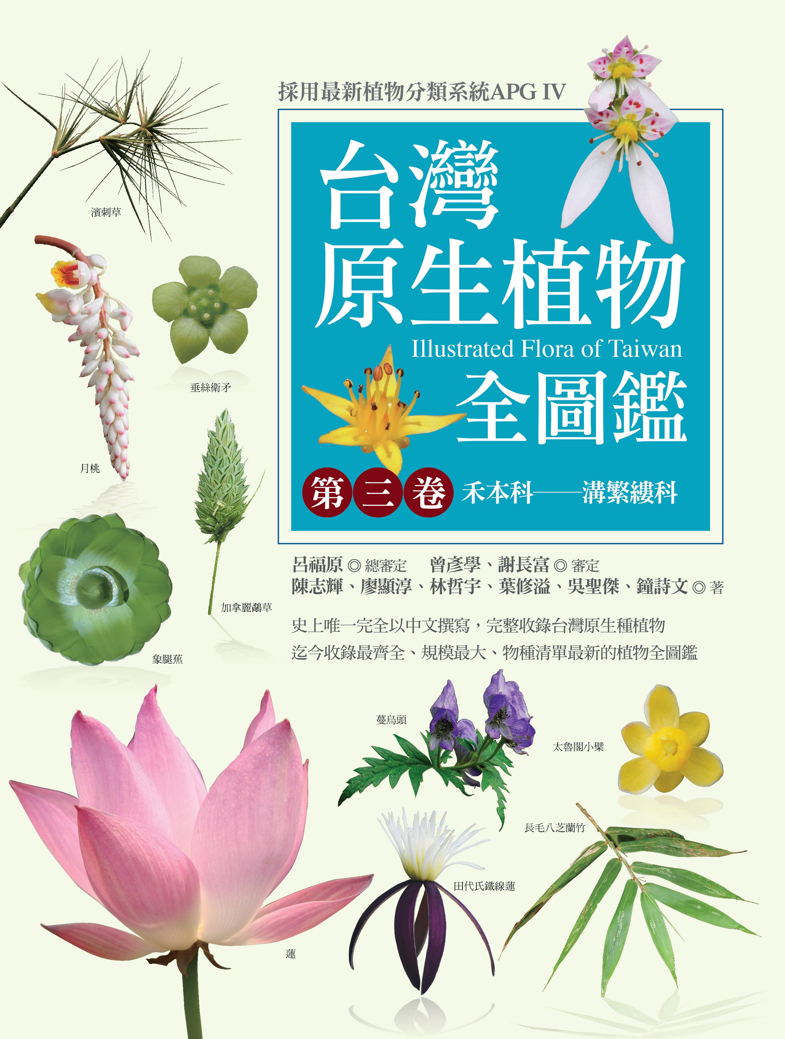 2017 Taiwan Poaceae